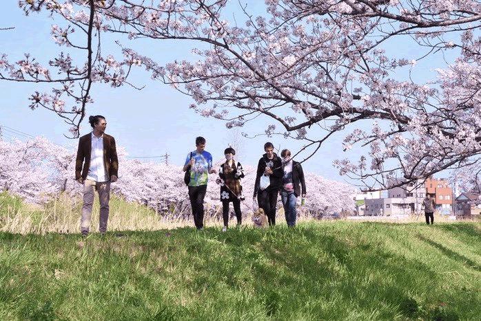 """イーサリアム創設者Vitalik氏、仮想通貨Dogecoinのモデル """"かぼすちゃん"""" と散歩"""