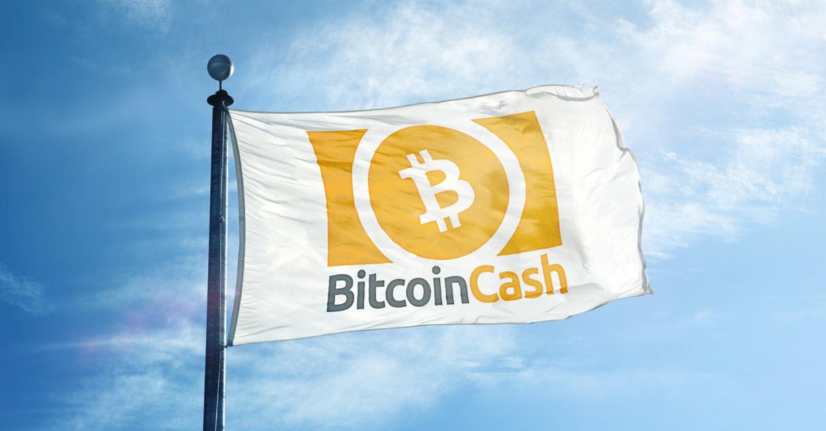 ビットコインキャッシュの価格が高騰!AntpoolによるBCHのバーン実施が要因か