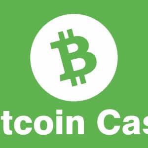 【2018年最新】仮想通貨ビットコインキャッシュに関するおすすめ人気ツイッターアカウントまとめ!