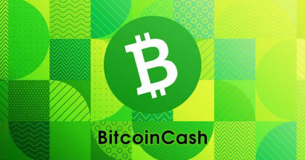 仮想通貨ウォレット「CitoWise」がビットコインキャッシュ(BCH)追加!