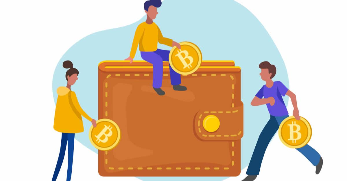 仮想通貨ウォレットはどれを使う?選ぶポイントとは