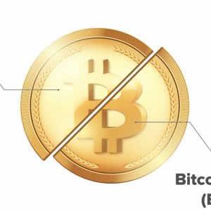 仮想通貨の「ソフトフォーク」とは?初心者向けに専門用語を解説!