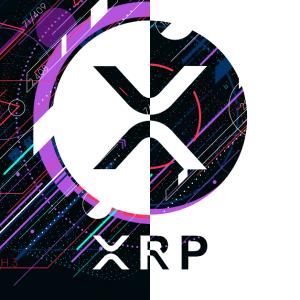Ripple(リップル/XRP)がタイの取引所TOKに上場!