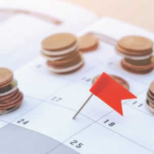 WealthNavi(ウェルスナビ)の分配金、再投資とは?分配や入金のタイミングは?