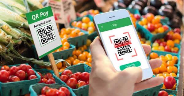 スーパーマーケット「オーケー」がPayPayとLINE Pay導入 会員特典の3%引きと併用可能