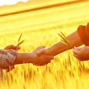 農業の短期バイトに特化したワークシェアアプリ「シェアグリ」リリース 農業人材不足を解消へ